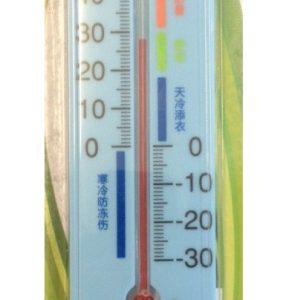 Termometru si higrometru analogic TM112HGR