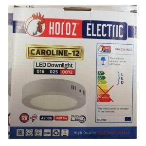 APLICA ROTUNDA CU LEDURI CAROLINE 12W 220V ED12HRZ