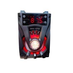 BOXA PORTABILA BLUETOOTH RADIO WKS1070ED